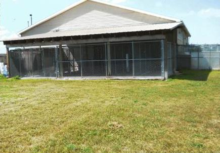 Photos of indoor/outdoor kennels at Lakeside Kennels, east of Remus, MI